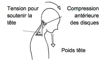 illustration flexion du cou